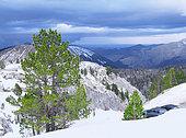 Snowy landscape, ski and winter sports resorts in mountain areas, La Pierre Saint Martin ski resort, municipality of Arette (64), Pyrenees, France