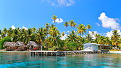 Coconuts, pontoons and farées of the village of Tetamanu in the south of the Fakarava atoll, Tuamotu archipelago, French Polynesia,