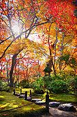okochi'sanso path, Japan