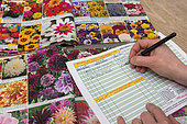 Ordering floral seed seeds in a catalog