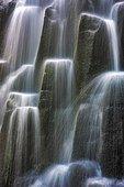 Waterfall, Oregon, USA