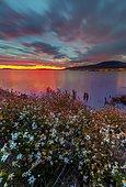 Lake at dusk, Patagonian Cordillera, El Chalten, Santa Cruz, Argentina