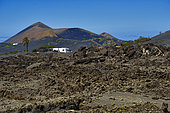 La Gería, region highly valued for its peculiar wines, Island of Lanzarote, Canary Islands.