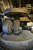 The mill, departmental museum of the Mountain, hamlet of Chateau Lambert, Haut du Them, Haute Saone, France