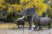 Animaux d'Afrique : éléphant, hippopotame et rhinocéros devant un Gingko (Gingko biloba), Muséum d'histoire naturelle, le Jardin des Science, parc de l'Arquebuse, Dijon, Côte-d'Or (21)France