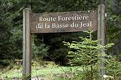 Route Forestière du Jeal, panel in forest, Les Rouges-Eaux, Vosges, France