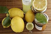 citrus fruit producer, IGP Menton lemon, fruit, liqueur, jams, organic farming, the Maison du Citron, Menton, Alpes-Maritimes, France