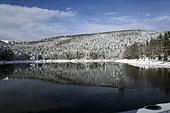Lac de la Lauch, view on Marksteinkopf, the ski resort, winter, snow, Hautes Vosges, Haut Rhin, France