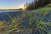 Twilight on the Pacific. Pacific Rim, Tofino South, Vancouver Island, British Columbia, Canada
