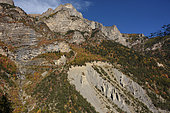 Alpage path in autumn in the Ecrins massif, Chateauroux les Alpes, Alps, France