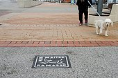 Ground signage encouraging dog owners to pick up the droppings of their animals, Mers-Les-Bains, Picardie, France
