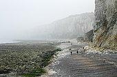 Cliff break on Yport Beach, Normandy, France