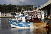 Trawlers equipped for scallop fishing in the port of Le Légué in Saint-Brieuc, Brittany, France