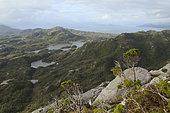 Campania Island, Great bear rainforest, British Columbia, Canada