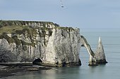 Aval Cliff in Etretat, Normandy, France