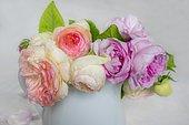Bouquet of Roses 'Pierre de Ronsard' and 'Quentin Latour'