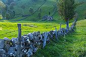 Cabaña pasiega and meadows, Miera Valley, Valles Pasiegos, Cantabria, Spain, Europe