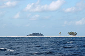 View of Clipperton Rock, the only visible part of the basaltic base supporting the atoll (2005 expedition)