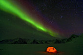 Aurora borealis on a bivouac on the Kolding Fjord. North East coast of Greenland