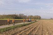 Small Game Hunting, Mackenheim, Bas-Rhin, Greater East Region, France