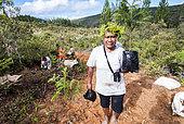 Femme kanak portant de jeunes Araucarias (Araucaria columnaris). Plantation à la tribu de Gohapin en partenariat avec le WWF. Nouvelle-Caledonie.