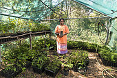 Patricia Borékaou, Nurseryman. Kanak woman in her nursery tribe, endemic plants for reforestation. Tribe of Gohapin. New Caledonia.