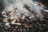 Pork meat and tubers placed on hot stones. Kanak traditional oven with braising. Feast of the new yam. Tribe of Gohapin. New Caledonia.