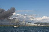 Piunktree Savanna fire on the west coast, New Caledonia