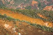 Paysage de maquis minier dégradé en Nouvelle-Calédonie. Erosion des sols de maquis minier en raison des incendies répétés. Commune du Mont-Dore. Nouvelle-Calédonie.