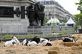 BiodiversitTerre, Paris, France Imagined by Gad Weil on the Place de la République in Paris from 02 to 05 June 2018, this huge plant and human work that is BiodiversiTerre invites everyone to grasp the responsibilities he or she has vis-à-vis Environmental protection. Through several living paintings one can better understand ecological issues and the need to take care of biodiversity. Many topics are discussed including urban agriculture, water, energy and recycling.
