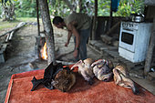 Fruit bats and plucked pigeons prepared to be eaten. New Caledonia