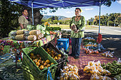 Kanak women selling fruits and vegetables on the roadside, New Caledonia