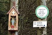 Chapelotte the Virgin Without Name, forest, hill of Pain de Sucre, Celles-sur-Plaine, Vosges, France
