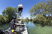 Scouting the river on a small boat driven by an electric motor in search of anaconda, Formoso River, Bonito, Mato Grosso do Sul, Brazil
