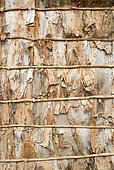 Traditional hut wall made of Niaouli bark (Melaleuca quinquenervia). Common Poya. New Caledonia.