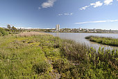 Industrialisation et urbanisation de l'estuaire de l'Aconcagua, Réserve de La Isla, Concon, V Region de Valparaiso, Chili