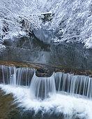 Bayas or Baias River in winter, Gorbeia Natural Park, Alava, Basque Country, Spain, Europe
