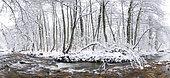 Bayas or Baias River in winter, Gorbeia Natural Park, Alava, Basque Country, Spain,