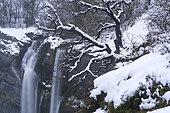 Gujuli Waterfall in winter, Gorbeia Natural Park, Urcabustaiz, Alava, Basque Country, Spain