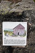 Rock with information panel on Gallo-Roman temple, mountain ash, top of Donon, Hautes Vosges, Bas Rhin, France