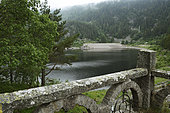 The old hydroelectric plant was dismantled around 2014, remains the platform, a smaller and more powerful should replace it, Lac Noir, Hautes Vosges, Orbey, Haut Rhin, France