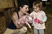 Little girl caressing a piglet on a farm, stable, farm des Pampilles, Masevaux, Haut Rhin, France