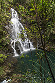 Waterfall in a rain forest in the Blue River Park. New Caledonia.