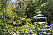 Botanical Garden, Cataract Gorge Reserve, Launceston, Tasmania