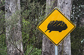 Echidna Road Sign, Cradle Mountain National Park, St Clair Lake, Tasmania, Australia