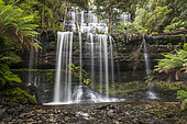 Russel Waterfall, Mount Field National Park, Tasmania, Australia