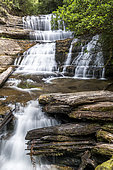 Lady Barron Waterfall, Mount Field National Park, Tasmania, Australia