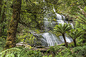 Marriotts Waterfall, Mount Field National Park, Tasmania, Australia