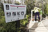 Hiker's Cleaning Station, Hartz Mountains National Park, Tasmania, Australia