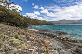 Rocky shore, South Bruny National Park, Tasmania, Australia
